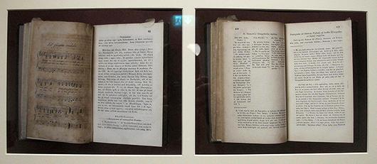 Anna Henrikssons fotokonst gör nya tolkningar av böckerna i Strindbergs bibliotek.