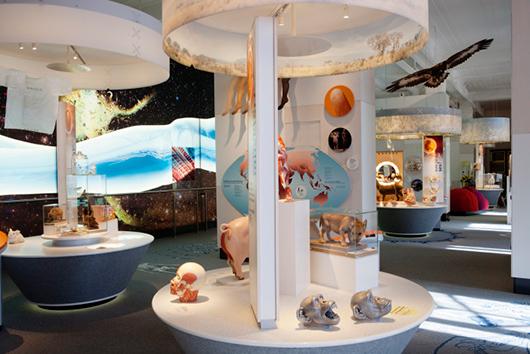 Utställningen är uppdelad i olika stationer med interaktiva moment.