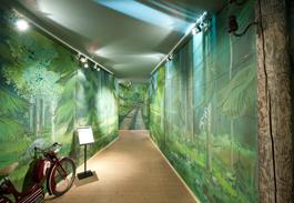 En tunnel av målad grönska leder in till mopedernas paradis. Foto: Björn Grankvist, Murberget Länsmuseet Västernorrland