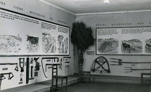 Utställningen Jordbruket i Halland från 1931 är den första funktionalistiska museiutställningen i Sverige. Foto: Varbergs museum