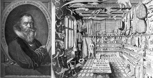 Ole Worm (1588-1655) har satt djupa avtryck i museihistorien. Omslaget till katalogen över hans samling hör till de mest avbildade i den museologiska litteraturen.