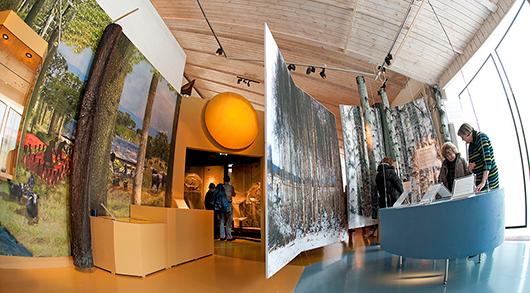 Mellan is och eld är Västergötlands museums forntidsutställning.