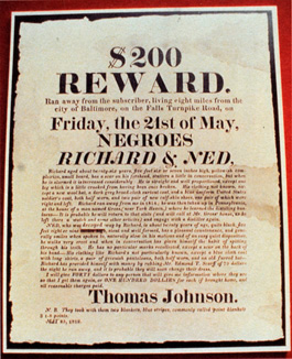 200 dollar för den som hittar en förrymd slav. En av tio starkt förstorade affischer placerade på röd vägg ovanför ett blodrött podium men att mycket stort gevär. Ur Mining the museum av Fred Wilson på Maryland Historical Society 1992.