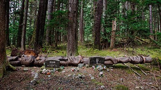 Efter att åren 1929–2006 ha förvarats i Sverige vilar G'psgolox totempåle i dag på en gravplats på Vancouver Island. Foto: Tony Sandin
