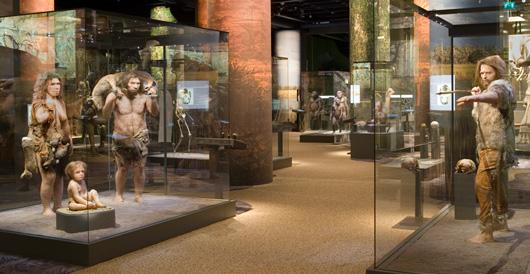 Neanderthalare och Cromagnonmannen.