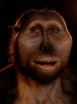 Paranthropus Boisei, en människoart. © Photo: P.Plailly / Eurelios 2007 - Reconstructions: Atelier Daynès Paris
