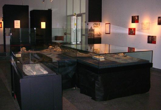 I utställningens entré möter höga svarta bås som innehåller videoinspelade intervjuer med de personer som samarbetat om tolkningen av gravfynden.