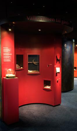 Till vänster syns mikrovärlden på piedestal och till höger hörlurar samt tyg att känna på. I montrarna kontrasterar föremålen snyggt mot färgglada hyllor.